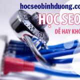hoc-seo-binh-duong